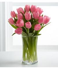 Tulipánová vášeň