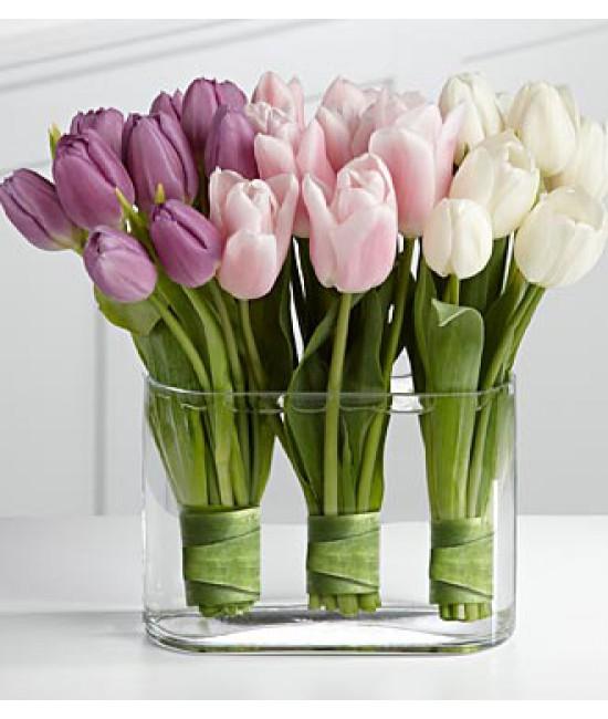 30 tulipánov